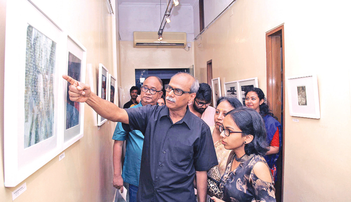 Painting exhibition 'Adherence' underway at AFD