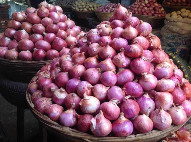 No shortage of onion in market: Commerce Sec