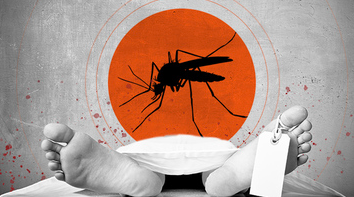 IEDCR confirms 81 dengue-related deaths; 360 new patients hospitalised