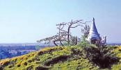 Visit unique Moheshkhali Island