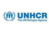 Refugees, asylum seekers risk their lives in search of safety, says UNHCR report