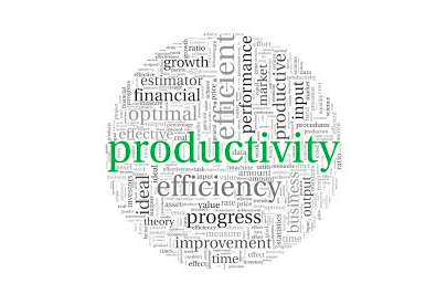 National Productivity Day observed
