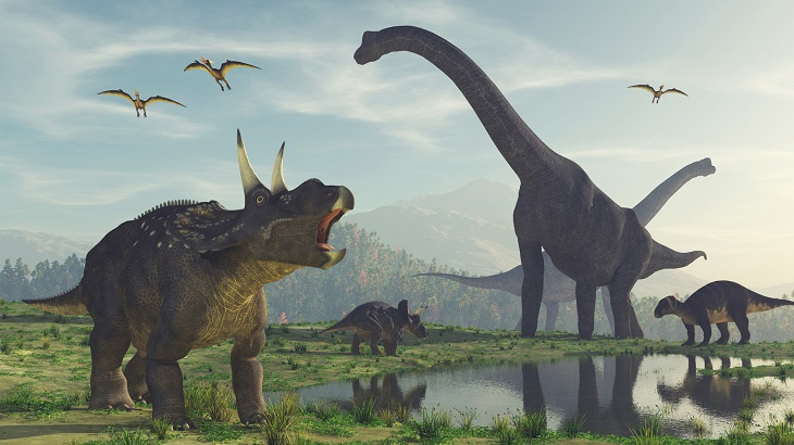 100-mln-year-old dinosaur footprints found in east China