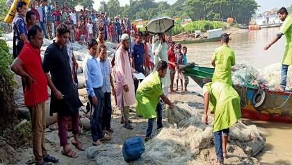 165 fishermen jailed for defying hilsha ban