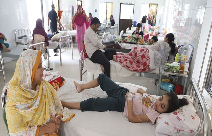 248 dengue patients hospitalised in 24 hrs