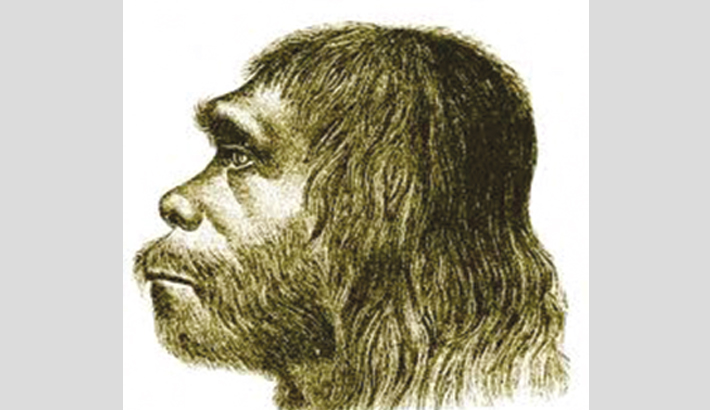 First Neanderthal activity found on Greek island