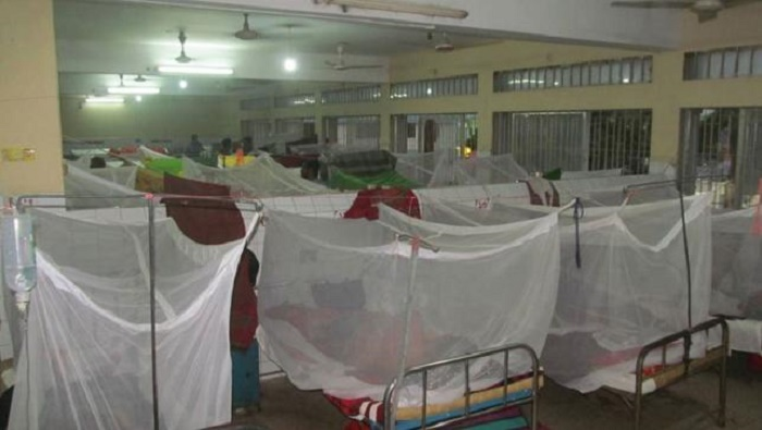 236 new dengue hospitalised in 24 hrs
