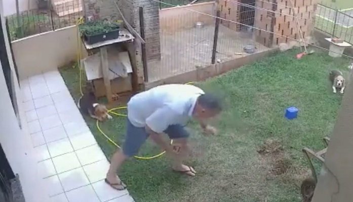 Man blows up yard trying to kill bugs, fails to destroy all of them (Video)