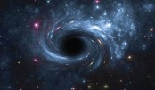New class of black holes discovered