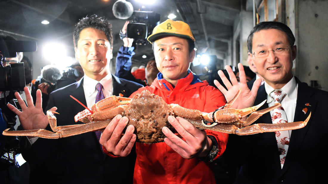 Snow crab sells for record-breaking $46,000 in Japan