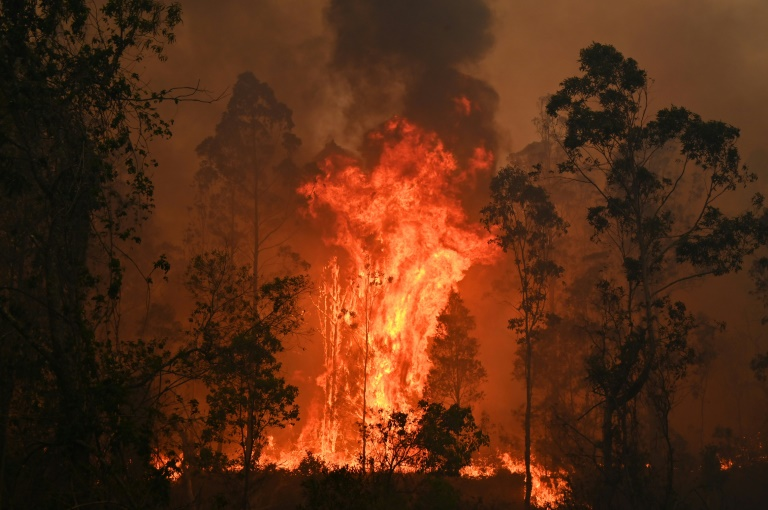 Australians warned worst bushfires may be yet to come