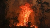 Australia bushfires: Three dead and thousands forced from homes
