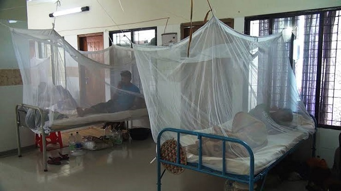 128 new dengue patients hospitalised in 24 hrs