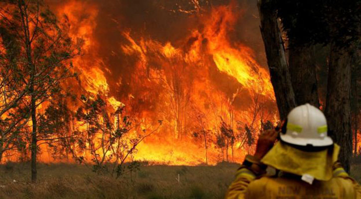 State of emergency declared in fire-hit Australia