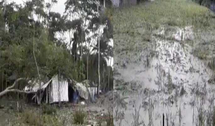 Crops worth Tk 263 crore lose by cyclone Bulbul