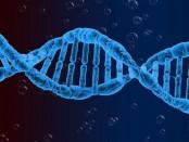 Genetics affect the way one tastes food