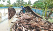 Lessons from Cyclone 'Bulbul': Views from the Ground