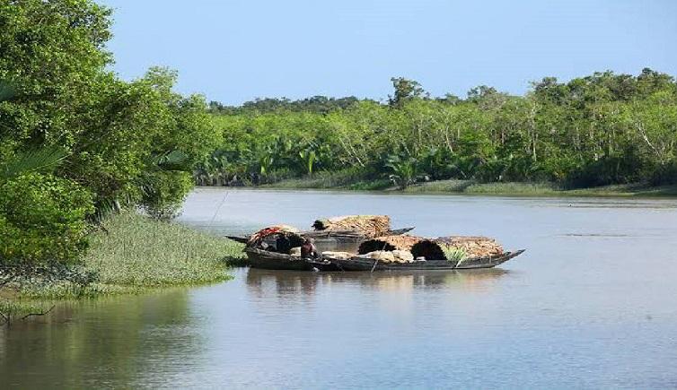 Sundarbans: The physical buffer that needs a rest
