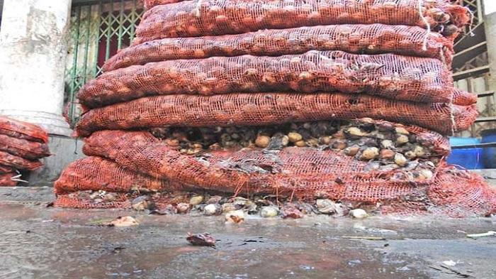 Rotten onion dumped into rivers, landfills!