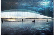 Norway is getting a ridiculously cool new whale-watching attraction