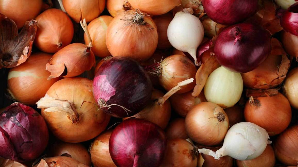Biman waives cargo charge on onion import