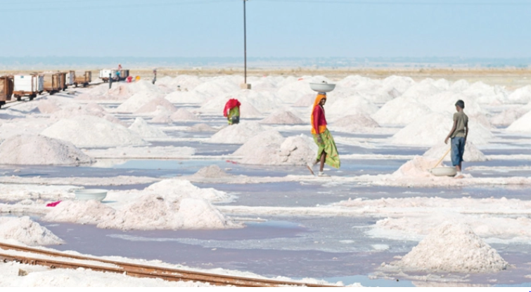 Millers to sell salt at Tk 15 per kg