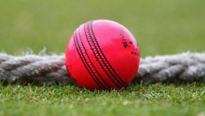 'Behaviour of pink ball closer to that of white ball'