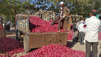 India likely to extend onion export ban to February
