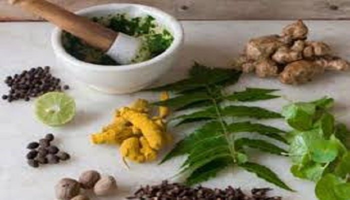 Ayurvedic herb can help to cure gastric