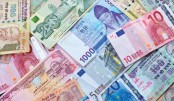 Remittance inflow rises  by 31.75pc in November
