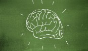 Try doing these things to get smarter brain