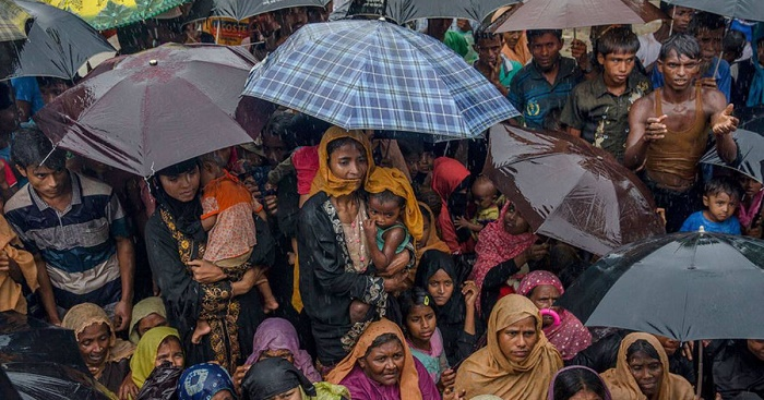 Local population at risk in Cox's Bazar for presence of Rohingyas: TIB