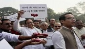 Indian Congress protests at Parliament premises over rising onion prices
