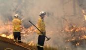Australian firefighters confront 'mega blaze' near Sydney