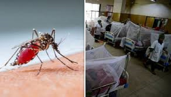 Dengue patients undergoing treatment in country