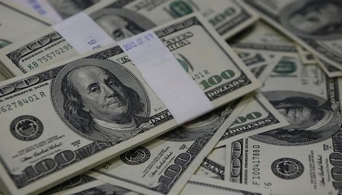 Remittance inflow increases by 22.67pc in 5 months