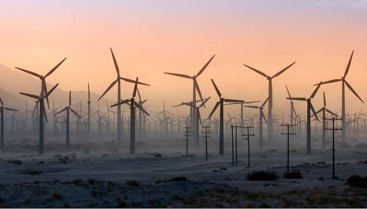 Mongla, Inani to get wind power plants; one bidder responds