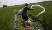 Govt to test imported pesticides, fertilisers
