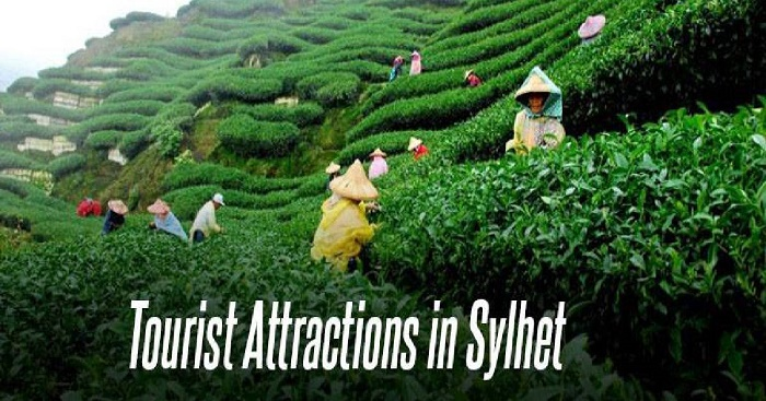 Top 6 tourist attractions in and around Sylhet