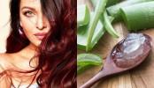 DIY homemade hair masks for thick luscious hair