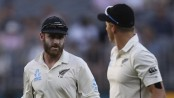 Williamson urges more fighting spirit from New Zealand