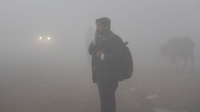 India cold wave: Delhi reels from coldest day in more than a century
