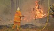 12 die in Australia bushfires