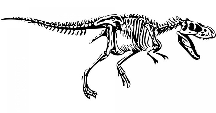 Did dwarf T-rexes really exist?