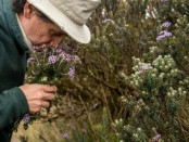 Colombian botanist risking his life to preserve nature's memory