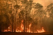 Australia counts cost after day of fire fury