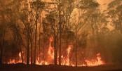 Power supply fears as troops called to battle Australia bushfires