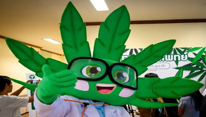 Free handouts of cannabis oil at Bangkok medical marijuana clinic