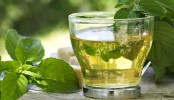 Drinking green tea linked to longer, healthier life: Study