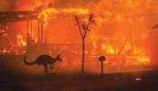 Extreme events reversing development goals